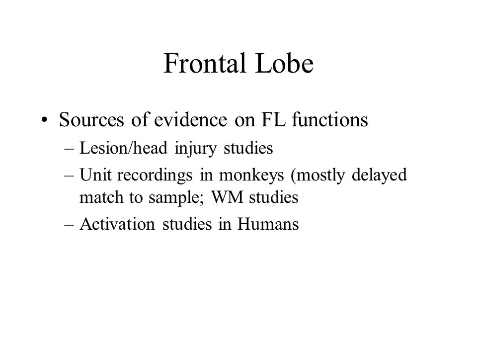 Frontal Lobe Sources of evidence on FL functions –Lesion/head injury studies –Unit recordings in monkeys (mostly delayed match to sample; WM studies –Activation studies in Humans