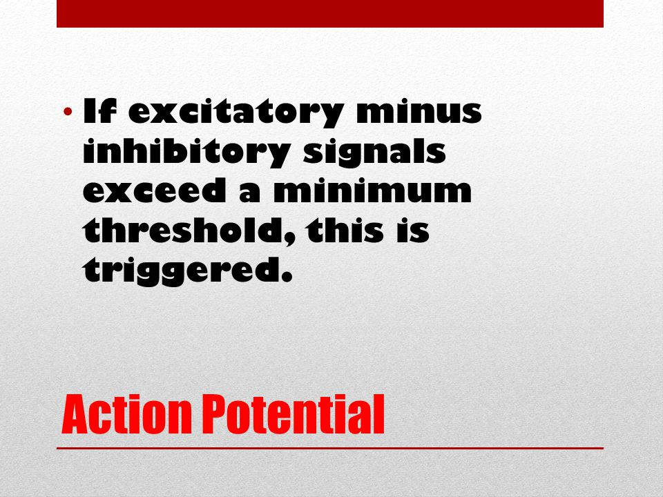 Action Potential If excitatory minus inhibitory signals exceed a minimum threshold, this is triggered.
