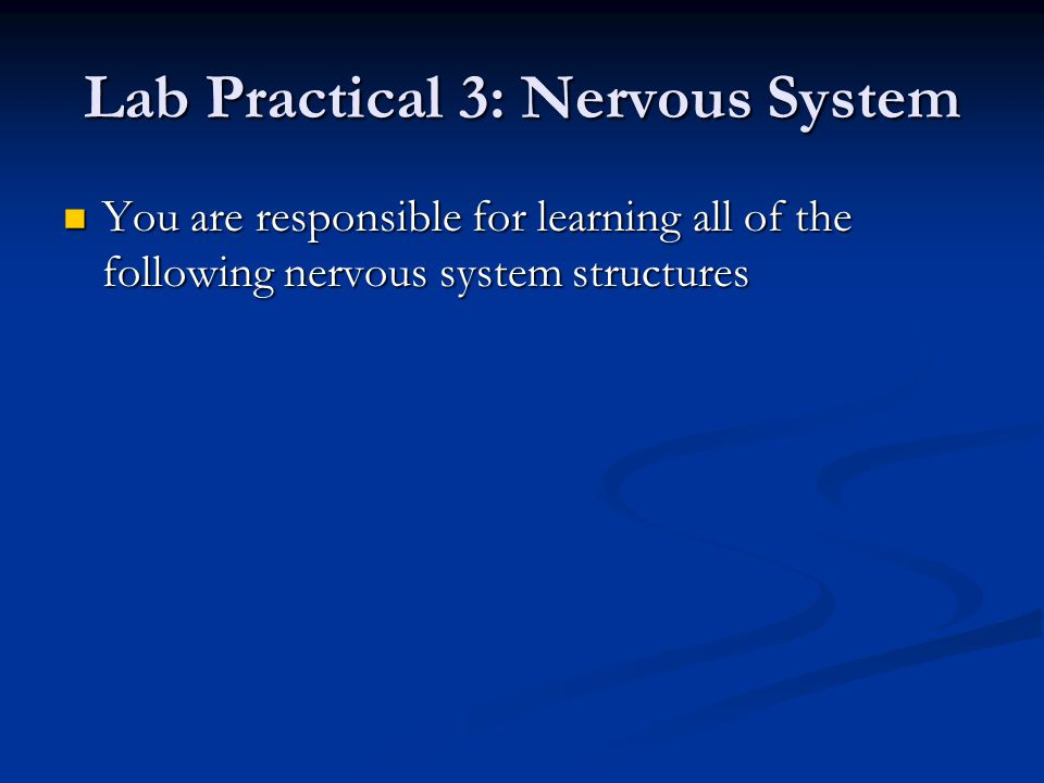 Lab Practical 3: Nervous System You are responsible for learning all of the following nervous system structures You are responsible for learning all of the following nervous system structures