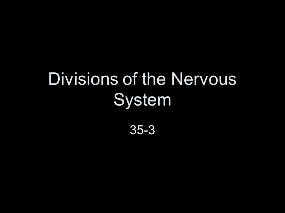 Divisions of the Nervous System 35-3