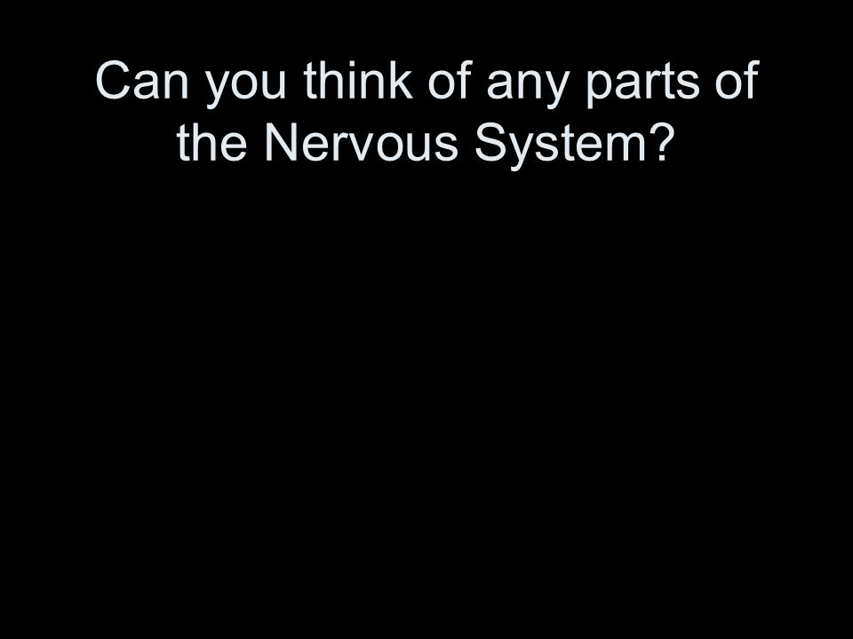 Can you think of any parts of the Nervous System