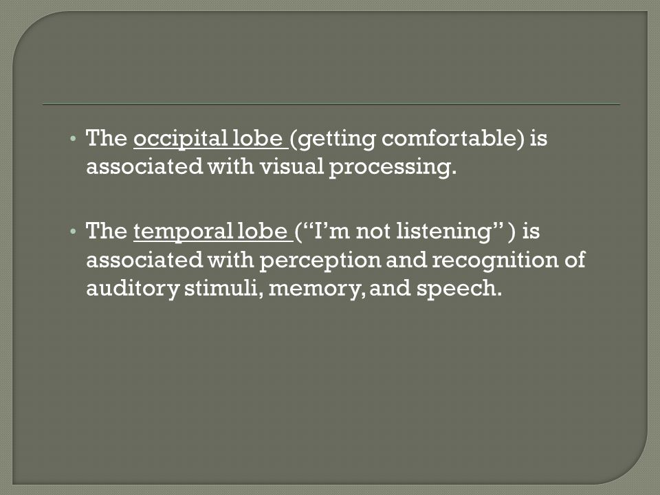 The occipital lobe (getting comfortable) is associated with visual processing.