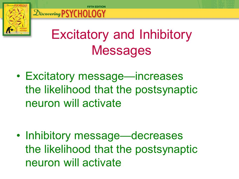 Excitatory message—increases the likelihood that the postsynaptic neuron will activate Inhibitory message—decreases the likelihood that the postsynaptic neuron will activate Excitatory and Inhibitory Messages