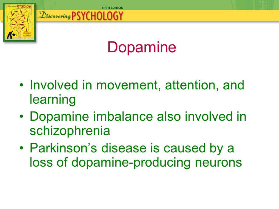 Involved in movement, attention, and learning Dopamine imbalance also involved in schizophrenia Parkinson's disease is caused by a loss of dopamine-producing neurons Dopamine