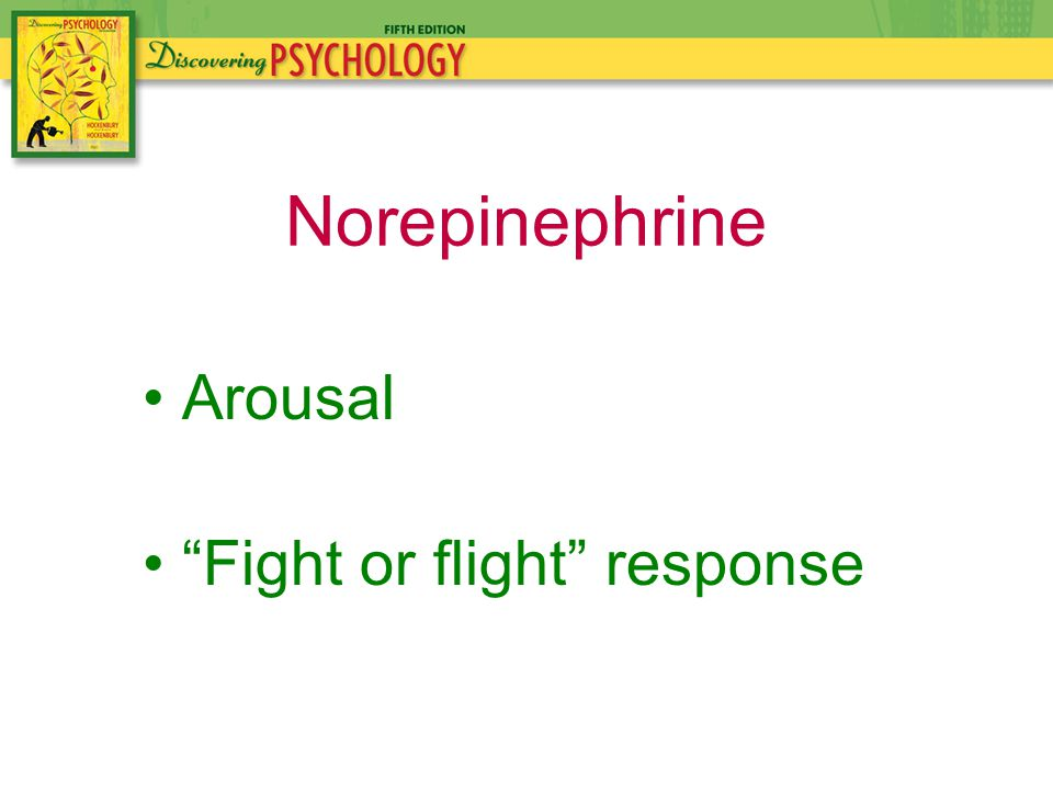 Arousal Fight or flight response Norepinephrine