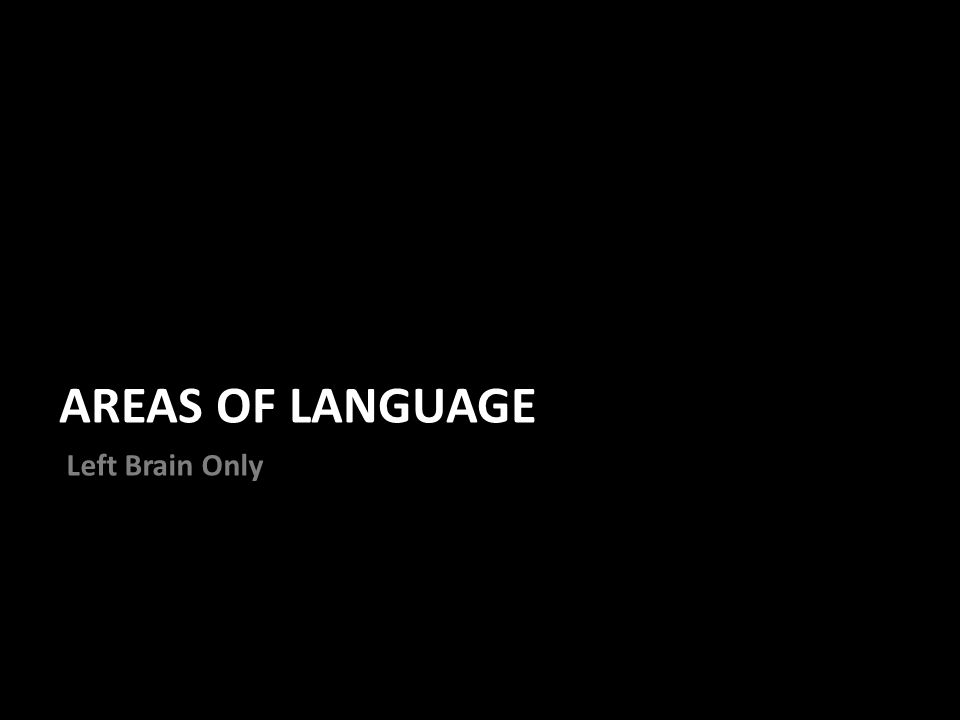 AREAS OF LANGUAGE Left Brain Only