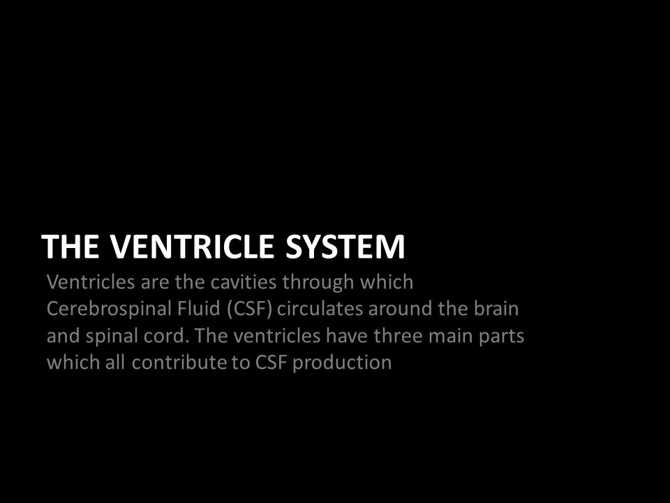 THE VENTRICLE SYSTEM Ventricles are the cavities through which Cerebrospinal Fluid (CSF) circulates around the brain and spinal cord.
