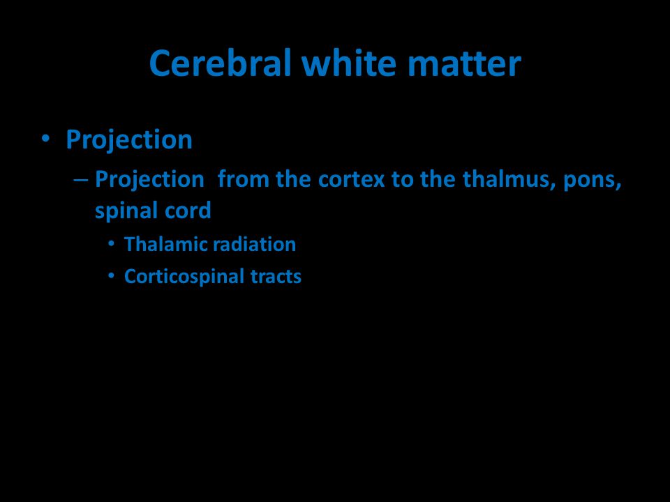 Cerebral white matter Projection – Projection from the cortex to the thalmus, pons, spinal cord Thalamic radiation Corticospinal tracts