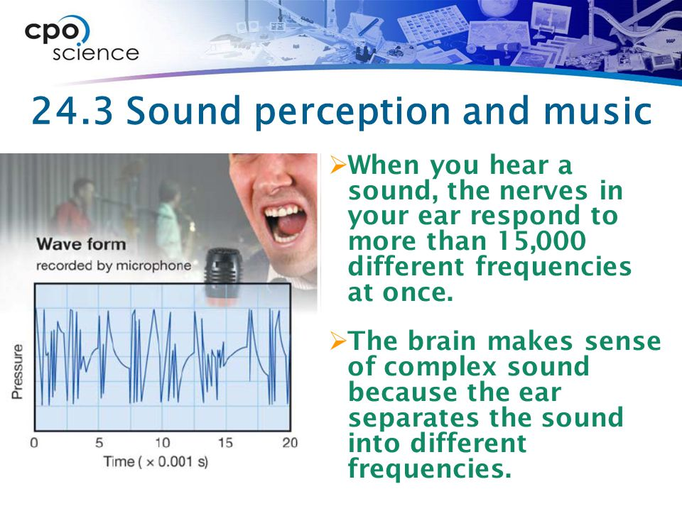24.3 Sound perception and music  When you hear a sound, the nerves in your ear respond to more than 15,000 different frequencies at once.