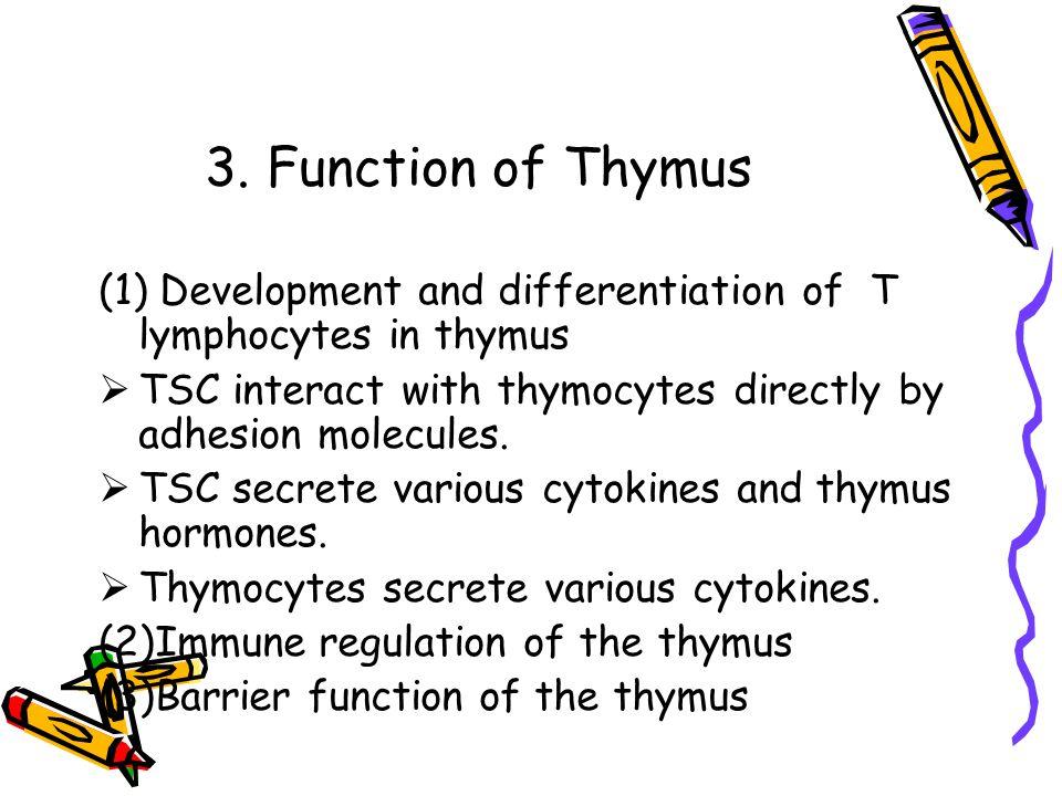 Chapter 3 Immune System Chapter 3 Immune System Is Immune