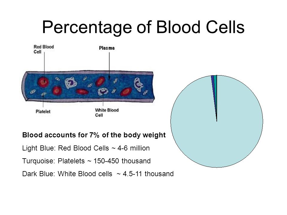 Percentage of Blood Cells Blood accounts for 7% of the body weight Light Blue: Red Blood Cells ~ 4-6 million Turquoise: Platelets ~ thousand Dark Blue: White Blood cells ~ thousand