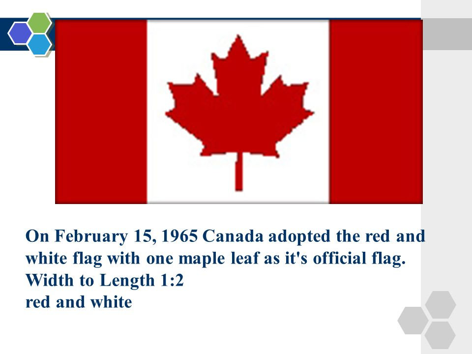 Canada Chapter 15 Canada National Symbols Maple Tree The
