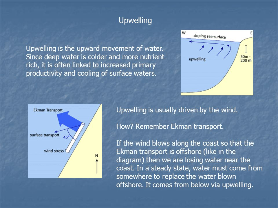 Upwellingdownwelling and related processes the 2 nd last class 8 upwelling upwelling ccuart Choice Image