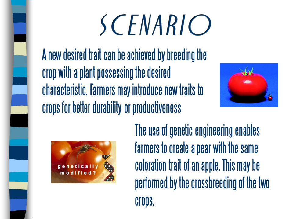 A new desired trait can be achieved by breeding the crop with a plant possessing the desired characteristic.