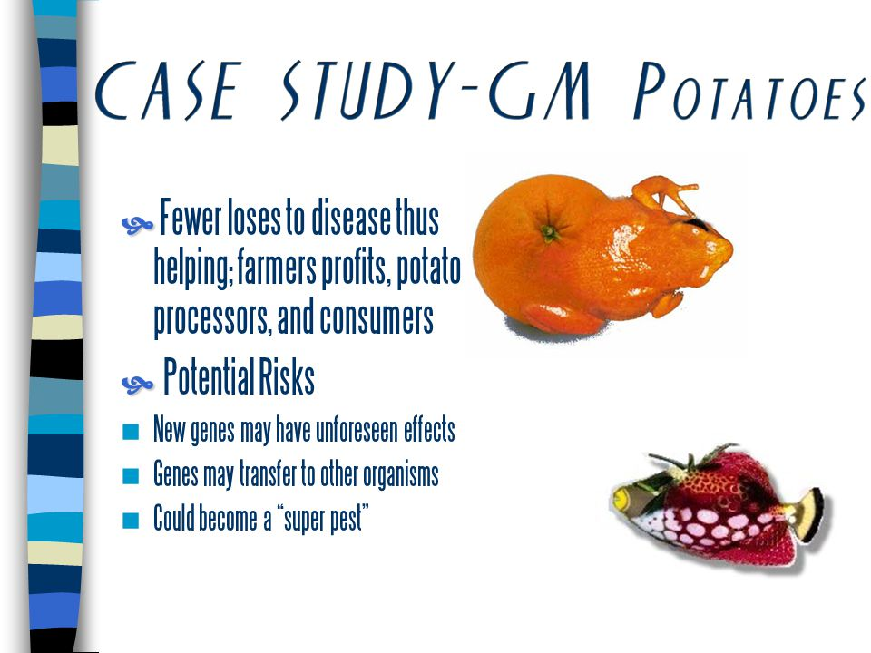   Fewer loses to disease thus helping; farmers profits, potato processors, and consumers   Potential Risks New genes may have unforeseen effects Genes may transfer to other organisms Could become a super pest