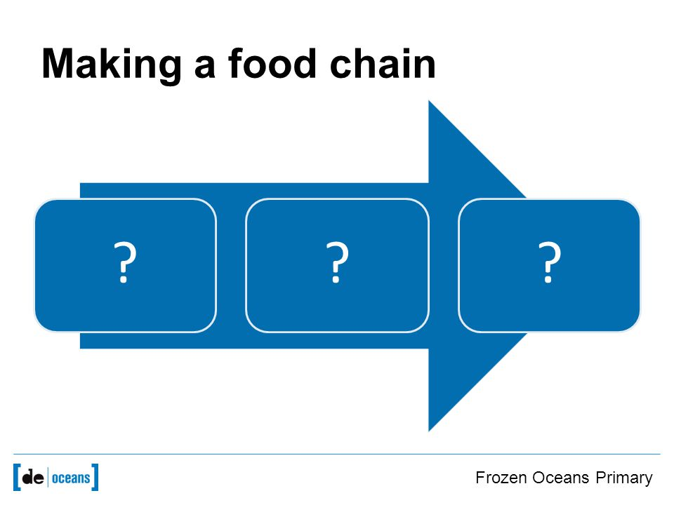 Making a food chain Frozen Oceans Primary