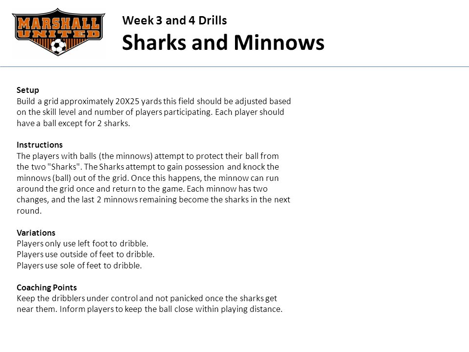 Week 3 and 4 Drills Sharks and Minnows Setup Build a grid approximately 20X25 yards this field should be adjusted based on the skill level and number of players participating.