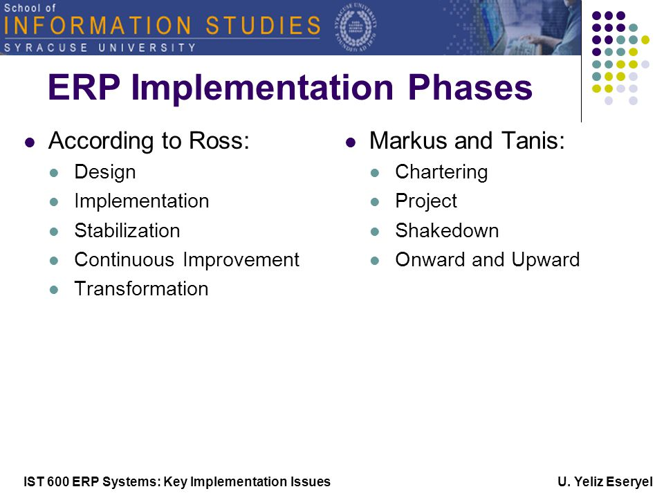 IST 600 ERP Systems: Key Implementation Issues U.