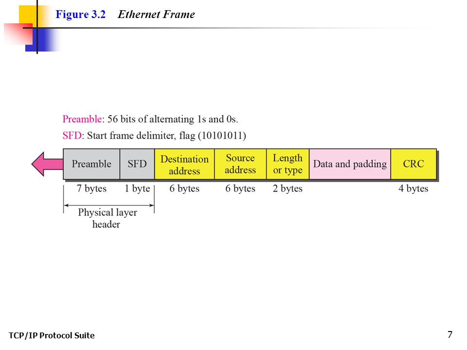 TCP/IP Protocol Suite 7 Figure 3.2 Ethernet Frame