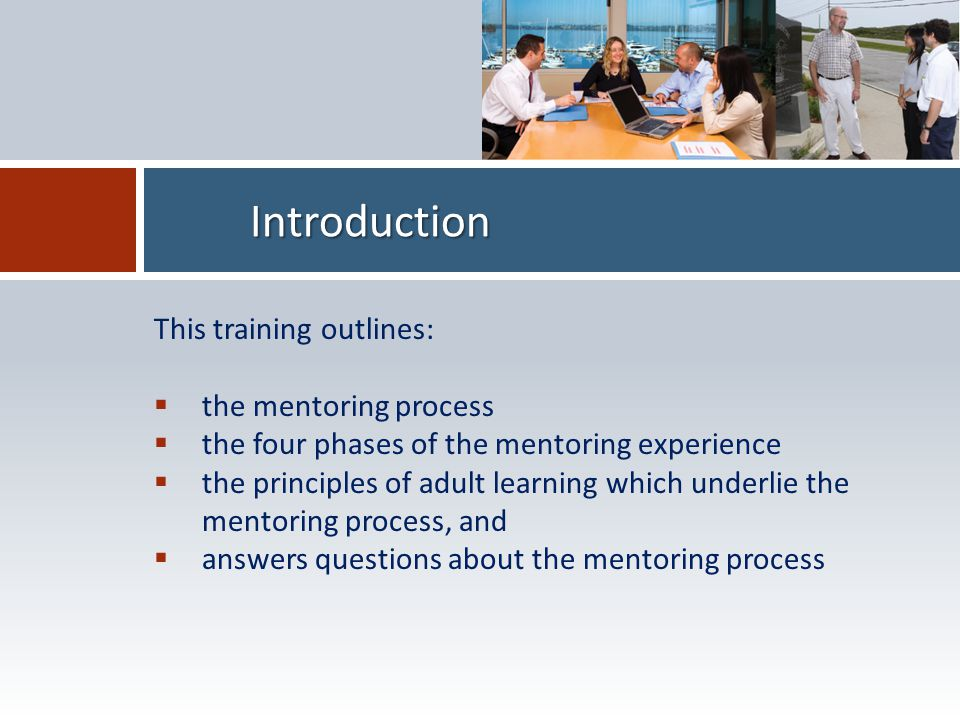 Introduction This training outlines:  the mentoring process  the four phases of the mentoring experience  the principles of adult learning which underlie the mentoring process, and  answers questions about the mentoring process