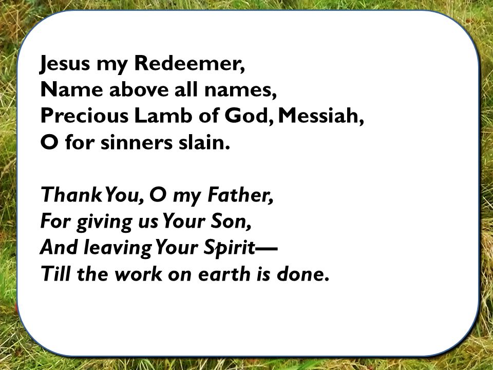 Jesus my Redeemer, Name above all names, Precious Lamb of God, Messiah, O for sinners slain.