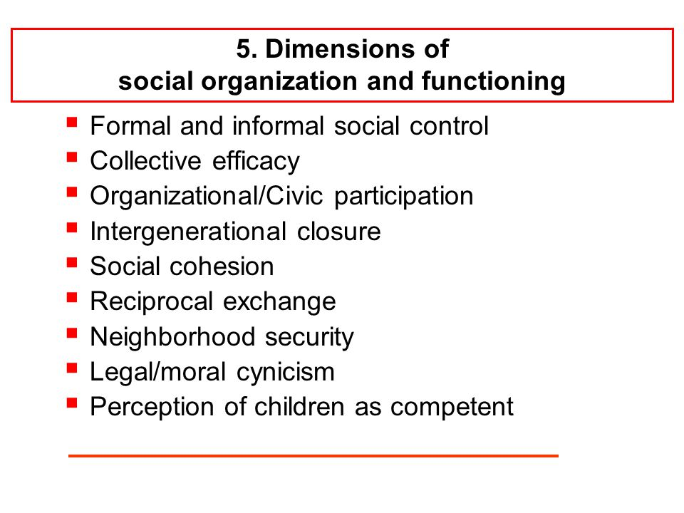  Formal and informal social control  Collective efficacy  Organizational/Civic participation  Intergenerational closure  Social cohesion  Reciprocal exchange  Neighborhood security  Legal/moral cynicism  Perception of children as competent 5.