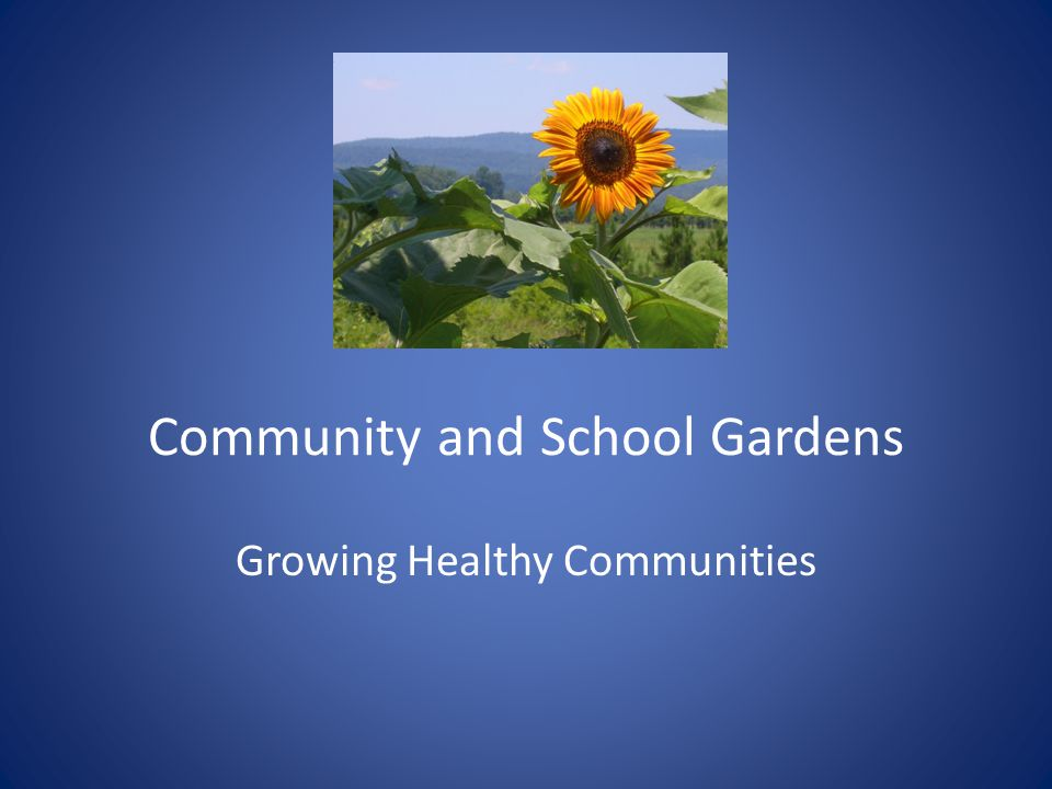 Community and School Gardens Growing Healthy Communities
