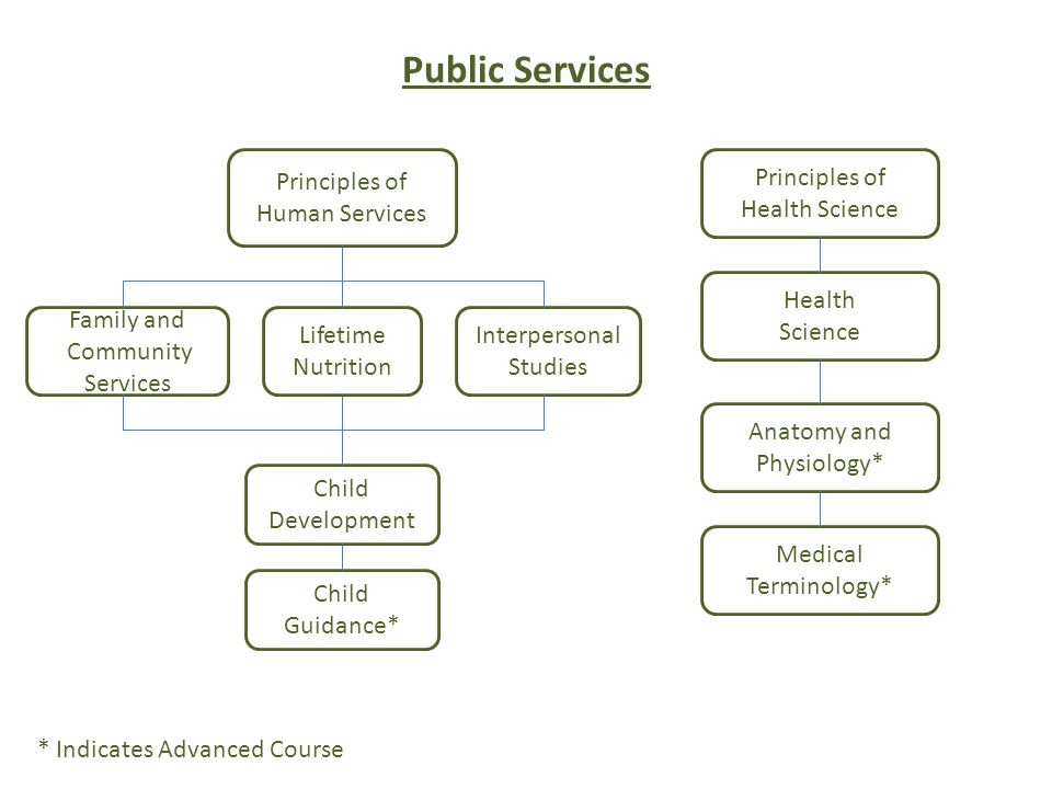 Public Services Principles of Human Services Family and Community Services Child Development Child Guidance* * Indicates Advanced Course Lifetime Nutrition Interpersonal Studies Principles of Health Science Health Science Medical Terminology* Anatomy and Physiology*