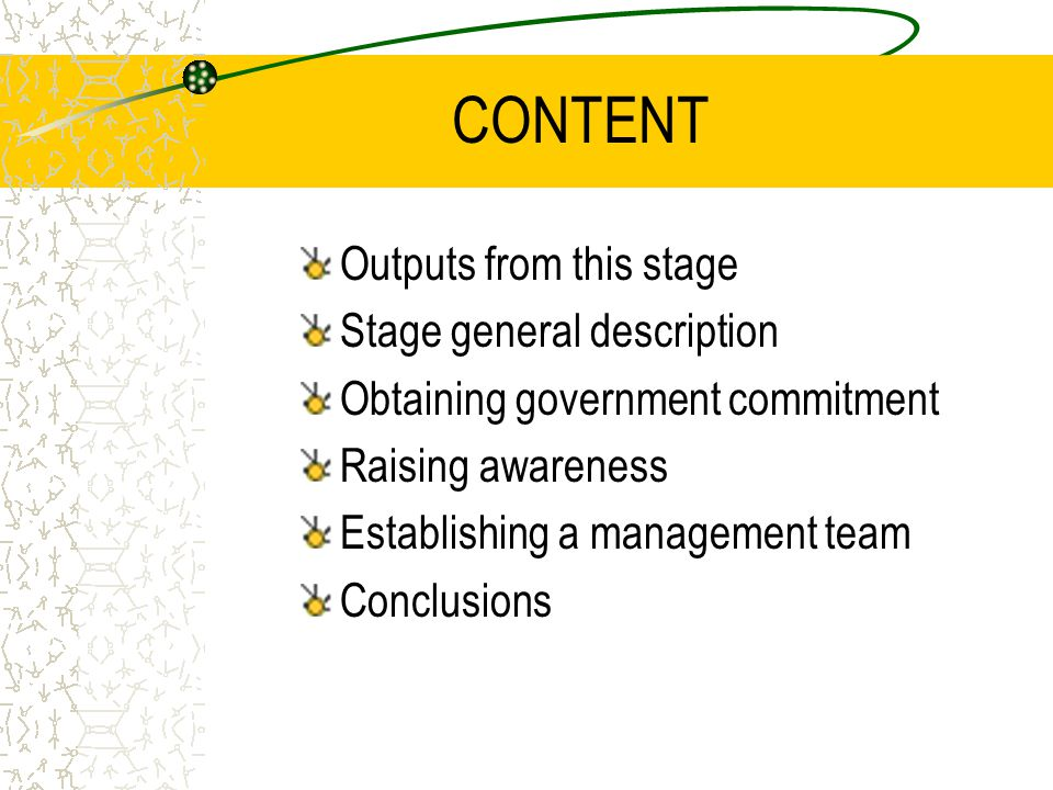 CONTENT Outputs from this stage Stage general description Obtaining government commitment Raising awareness Establishing a management team Conclusions