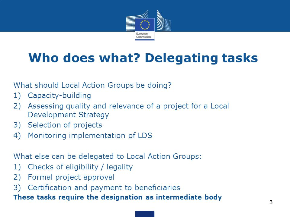 Who does what. Delegating tasks What should Local Action Groups be doing.