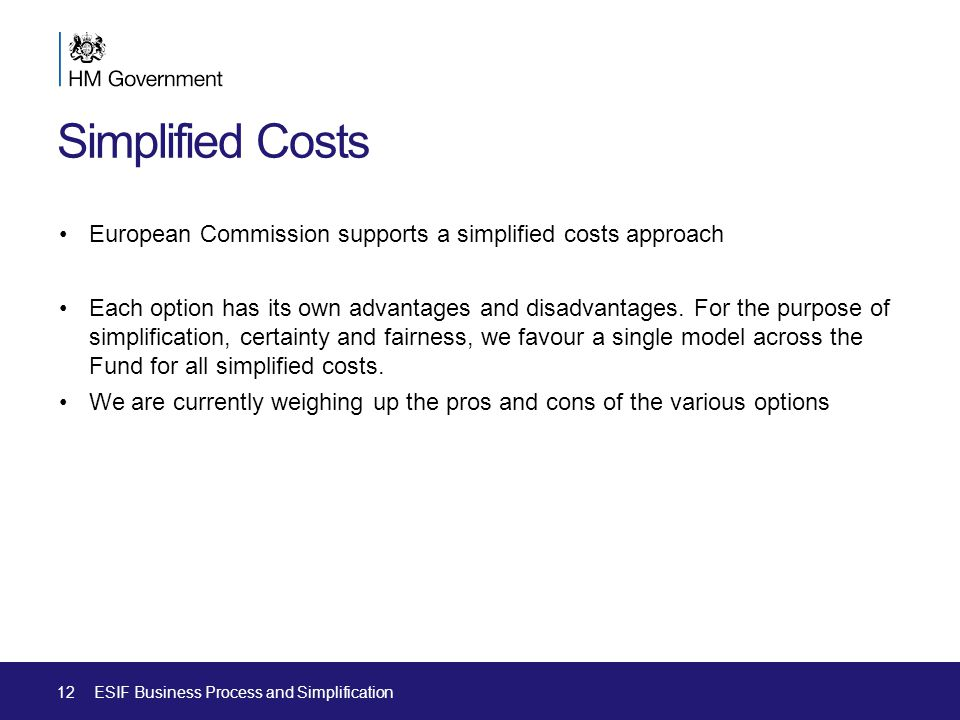 Simplified Costs European Commission supports a simplified costs approach Each option has its own advantages and disadvantages.