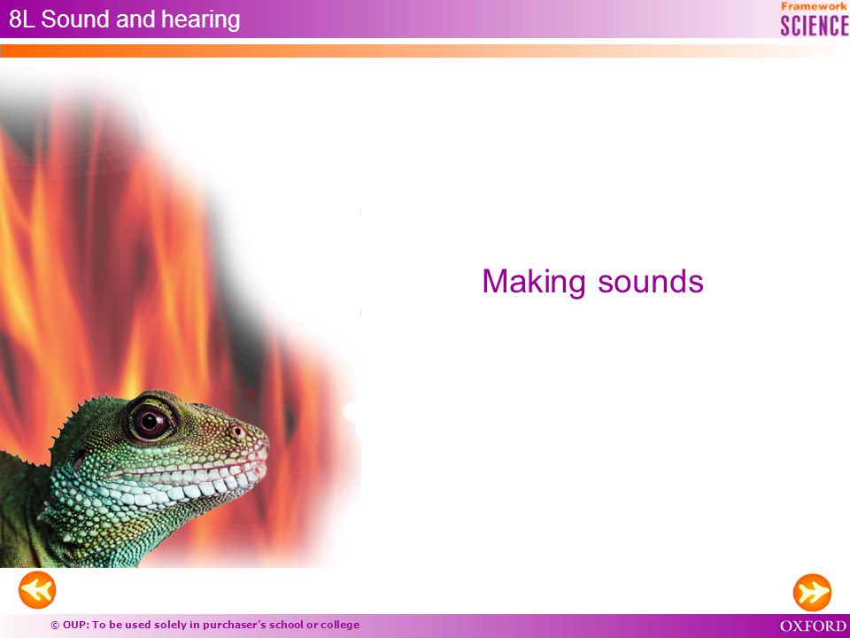 © OUP: To be used solely in purchaser's school or college Making sounds 8L Sound and hearing