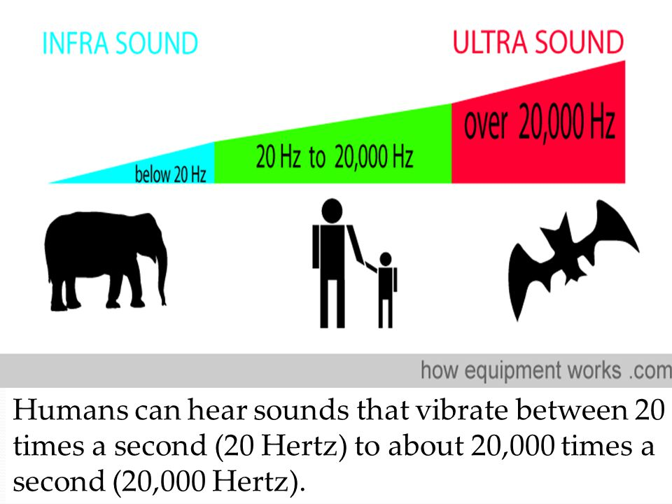 Humans can hear sounds that vibrate between 20 times a second (20 Hertz) to about 20,000 times a second (20,000 Hertz).