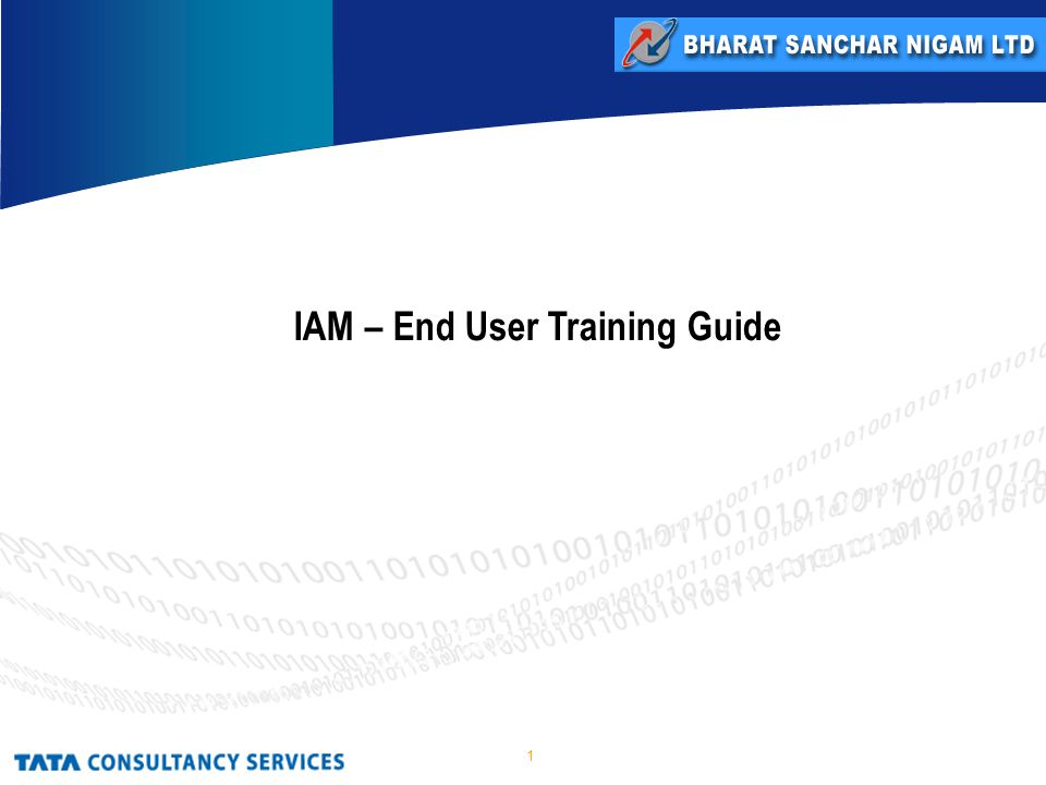 1 IAM – End User Training Guide
