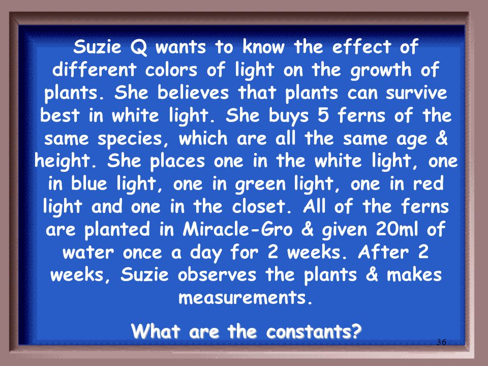 35 Suzie Q wants to know the effect of different colors of light on the growth of plants.