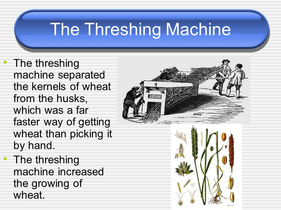 The Threshing Machine The threshing machine separated the kernels of wheat from the husks, which was a far faster way of getting wheat than picking it by hand.