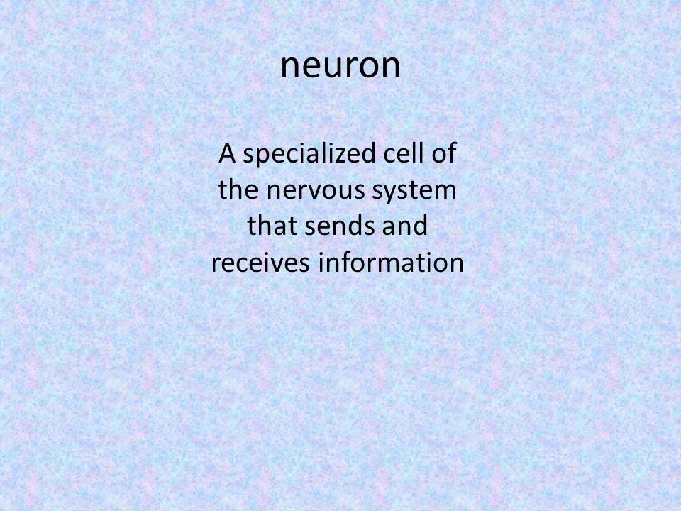 neuron A specialized cell of the nervous system that sends and receives information