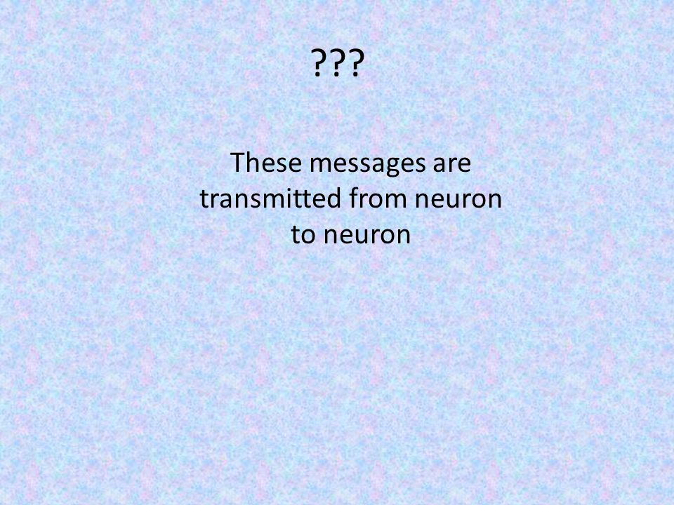 These messages are transmitted from neuron to neuron