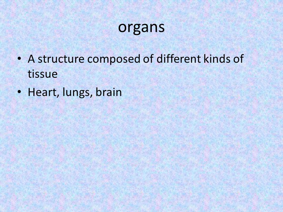 organs A structure composed of different kinds of tissue Heart, lungs, brain