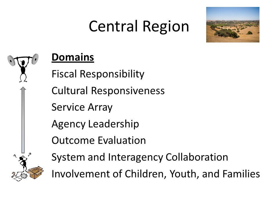Central Region Domains Fiscal Responsibility Cultural Responsiveness Service Array Agency Leadership Outcome Evaluation System and Interagency Collaboration Involvement of Children, Youth, and Families