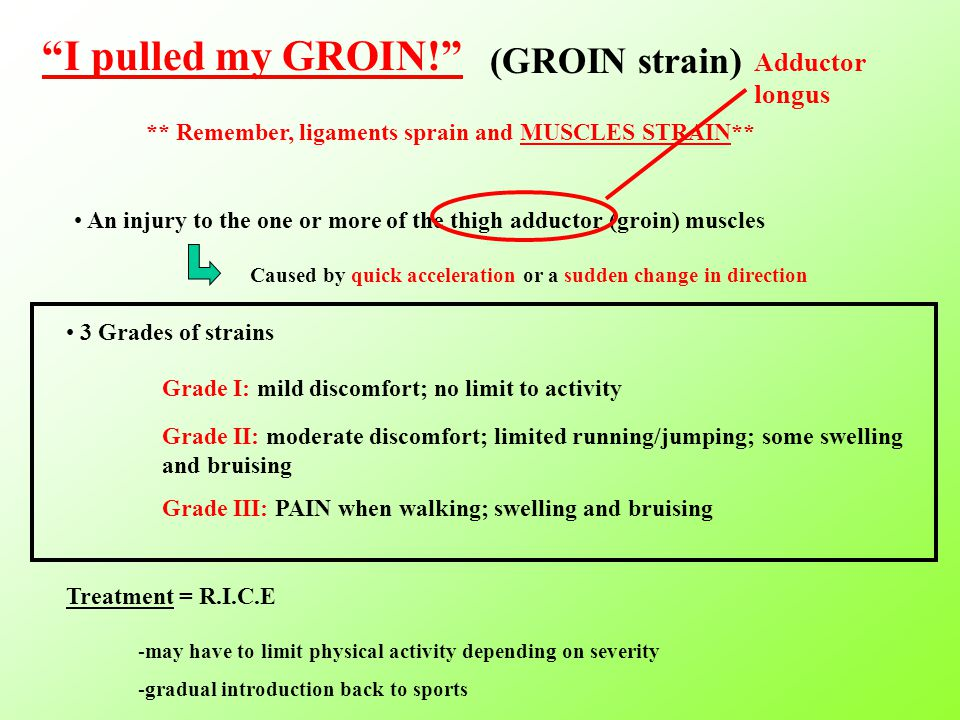 I pulled my GROIN! (GROIN strain) ** Remember, ligaments sprain and MUSCLES STRAIN** An injury to the one or more of the thigh adductor (groin) muscles Caused by quick acceleration or a sudden change in direction 3 Grades of strains Grade I: mild discomfort; no limit to activity Grade II: moderate discomfort; limited running/jumping; some swelling and bruising Grade III: PAIN when walking; swelling and bruising Adductor longus Treatment = R.I.C.E -may have to limit physical activity depending on severity -gradual introduction back to sports