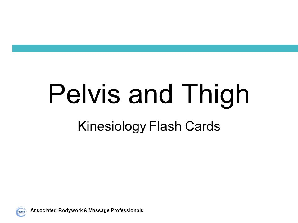 Associated Bodywork & Massage Professionals Pelvis and Thigh Kinesiology Flash Cards