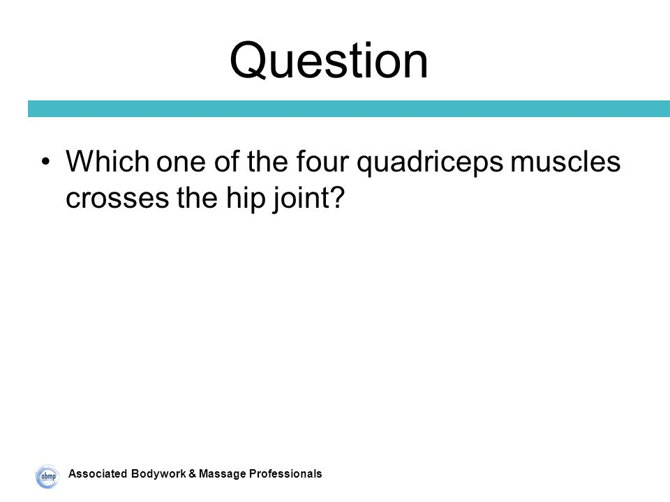 Associated Bodywork & Massage Professionals Question Which one of the four quadriceps muscles crosses the hip joint