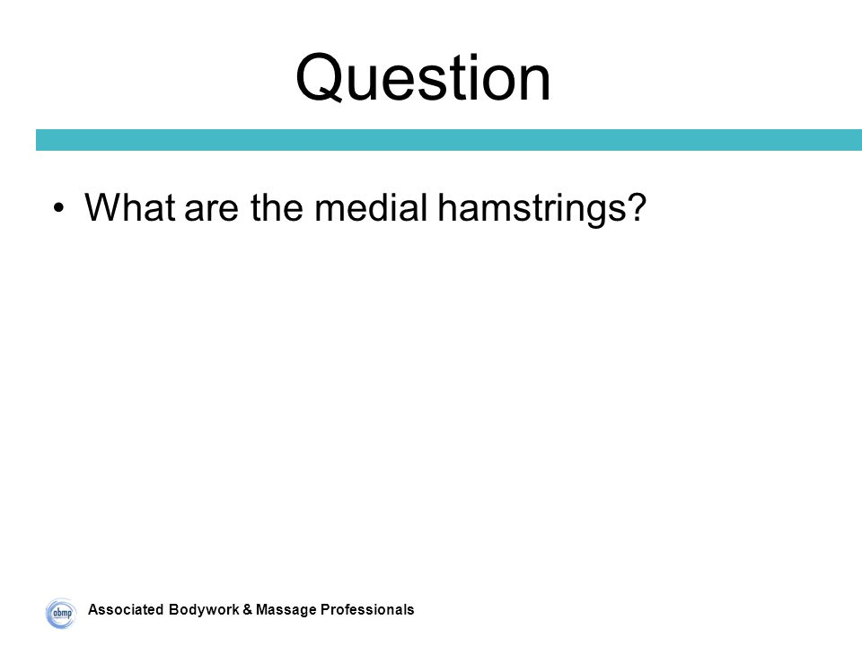 Associated Bodywork & Massage Professionals Question What are the medial hamstrings