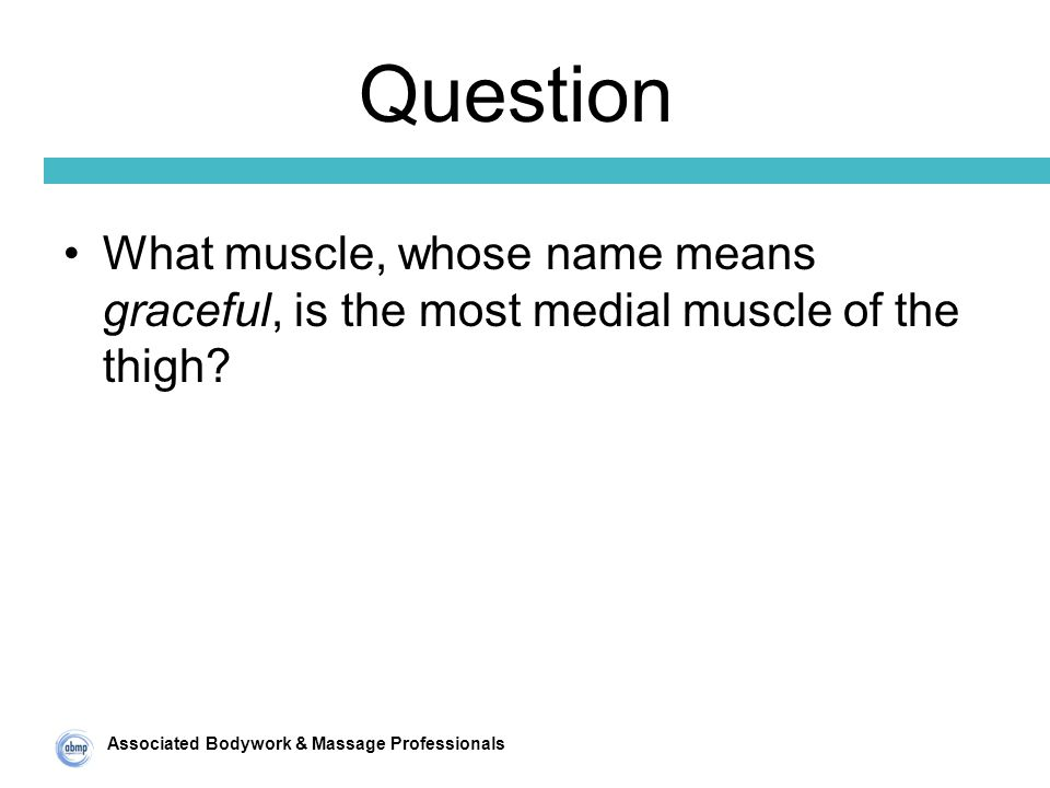 Associated Bodywork & Massage Professionals Question What muscle, whose name means graceful, is the most medial muscle of the thigh