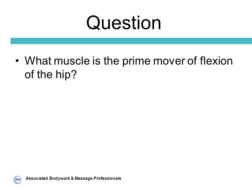Associated Bodywork & Massage Professionals Question What muscle is the prime mover of flexion of the hip