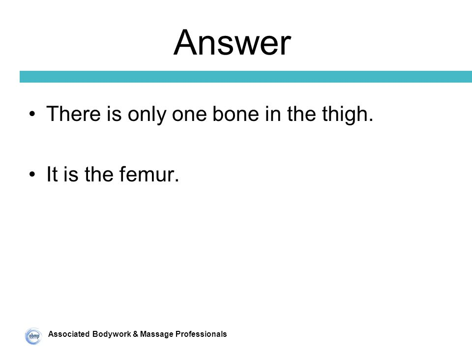 Associated Bodywork & Massage Professionals Answer There is only one bone in the thigh.
