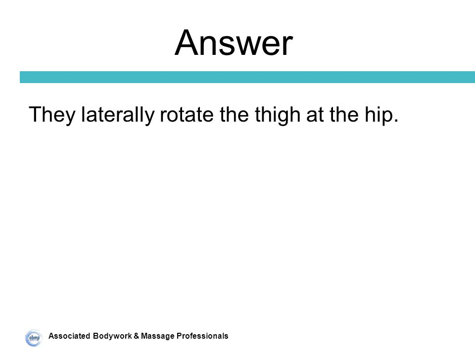 Associated Bodywork & Massage Professionals Answer They laterally rotate the thigh at the hip.