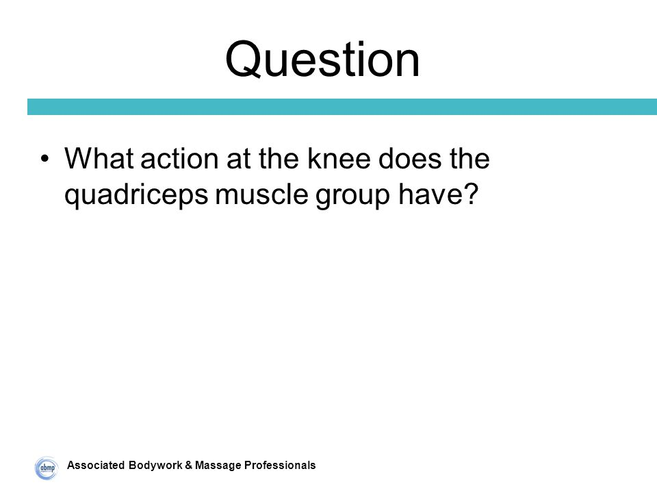 Associated Bodywork & Massage Professionals Question What action at the knee does the quadriceps muscle group have