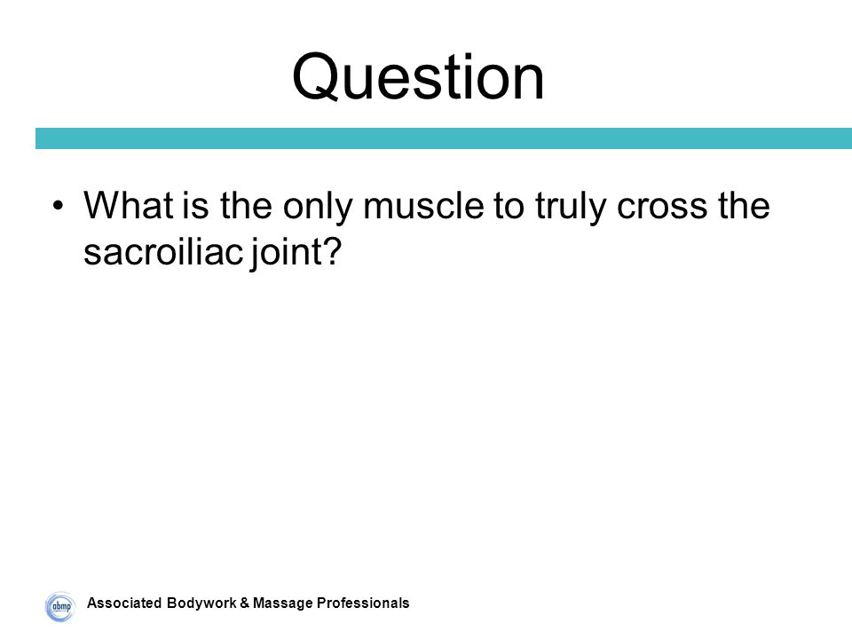 Associated Bodywork & Massage Professionals Question What is the only muscle to truly cross the sacroiliac joint